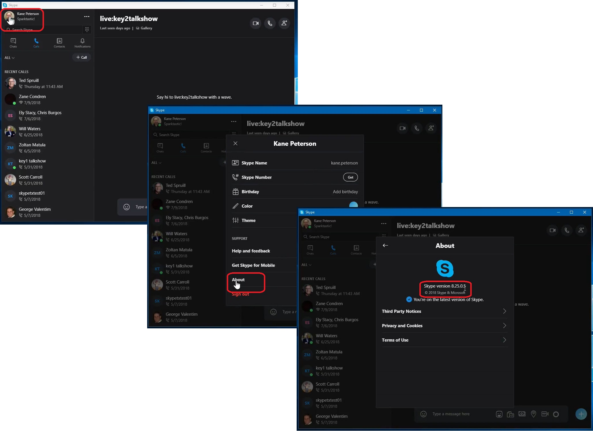 Using NDI® in Skype